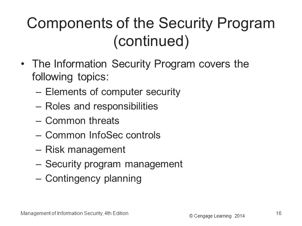 Components of the Security Program (continued)