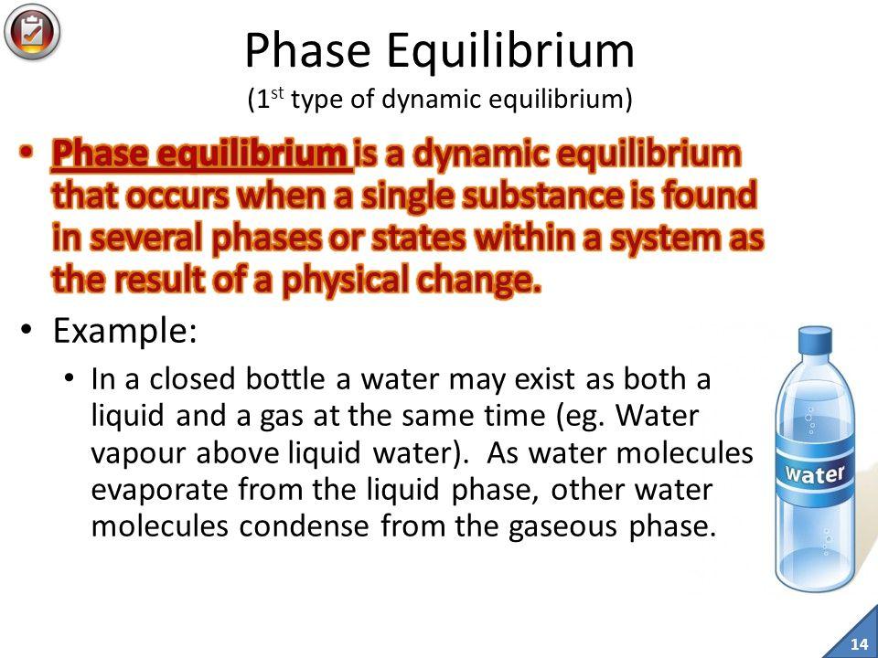 Phase Equilibrium (1st type of dynamic equilibrium)