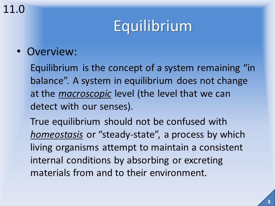 Equilibrium 11.0 Overview: