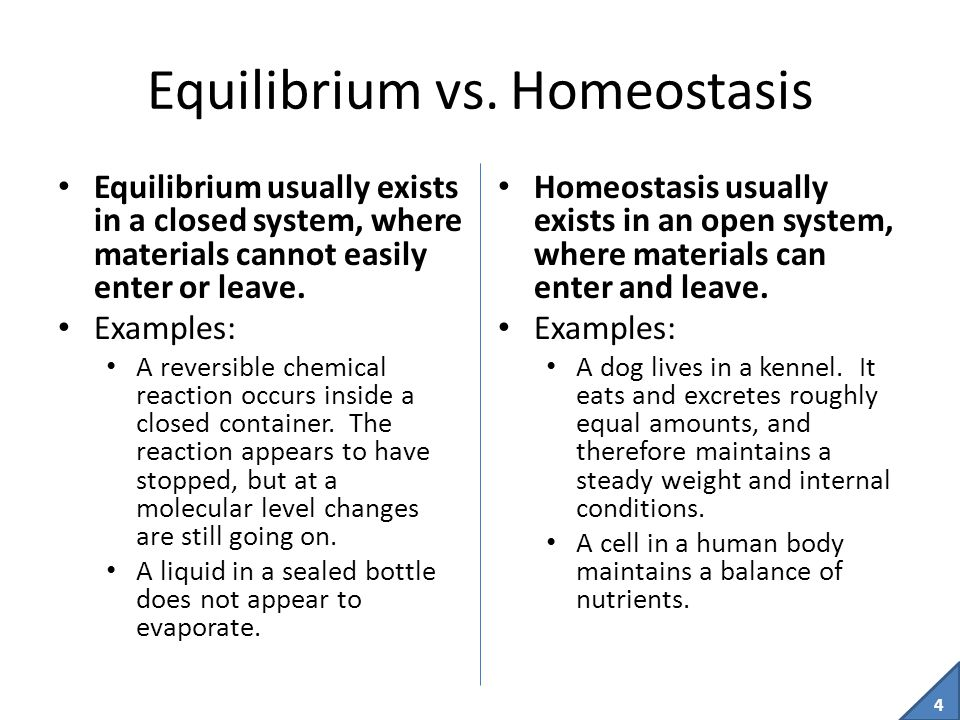 Equilibrium vs. Homeostasis