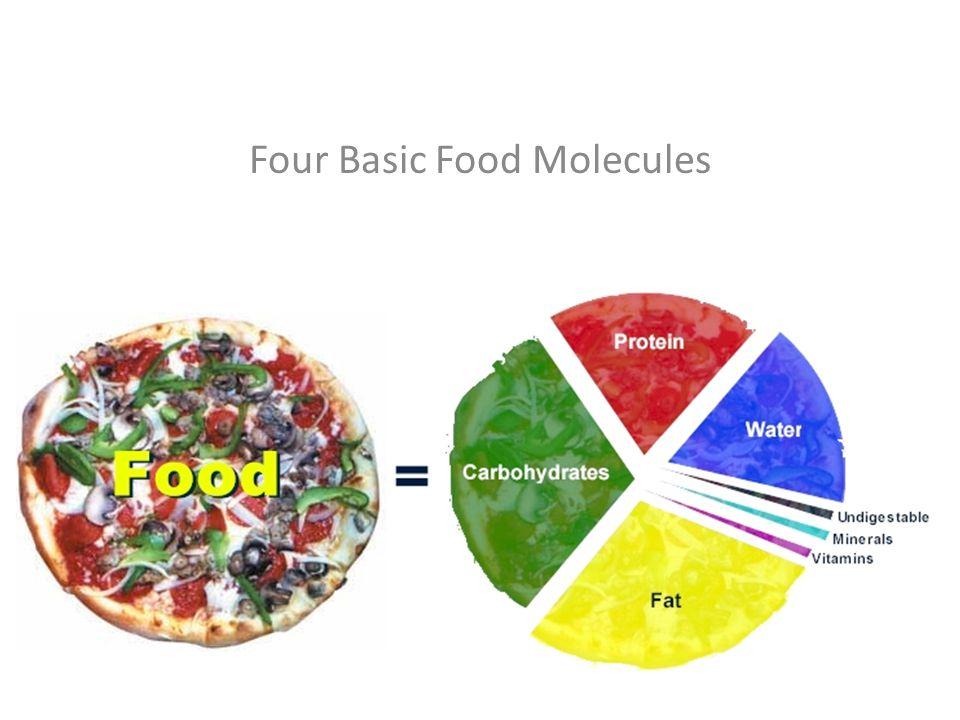 Four Basic Food Molecules