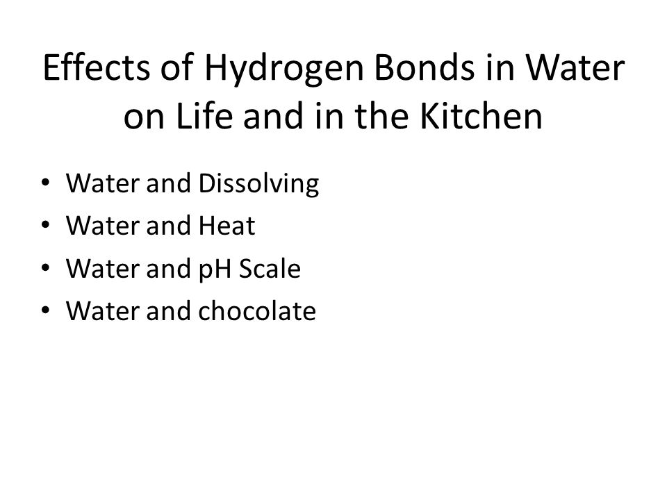 Effects of Hydrogen Bonds in Water on Life and in the Kitchen
