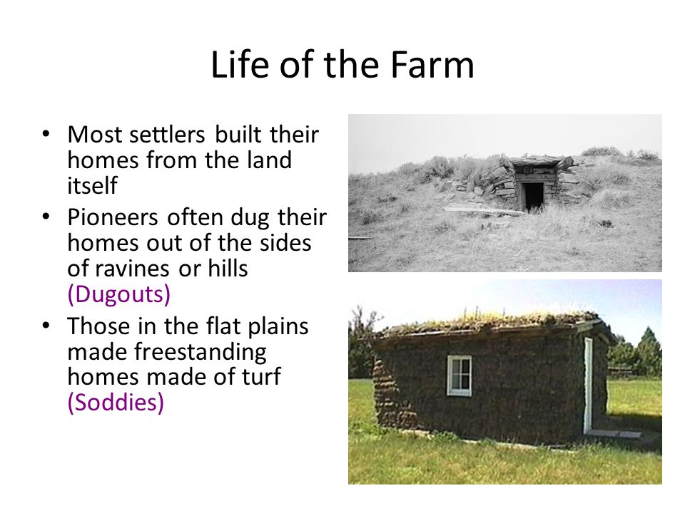 Life of the Farm Most settlers built their homes from the land itself