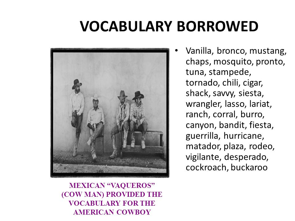 VOCABULARY BORROWED