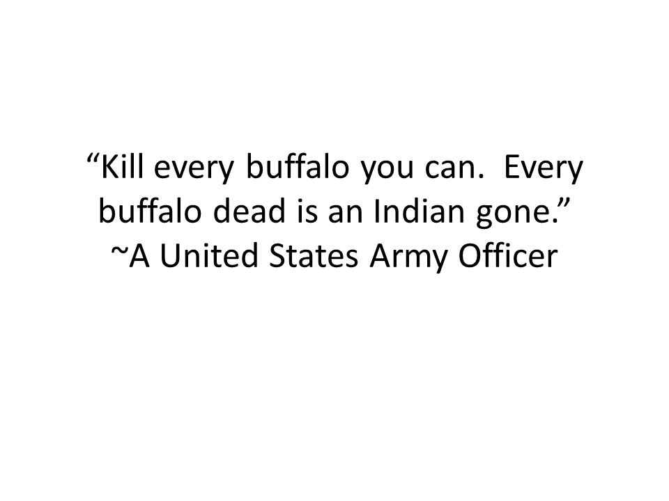 Kill every buffalo you can. Every buffalo dead is an Indian gone