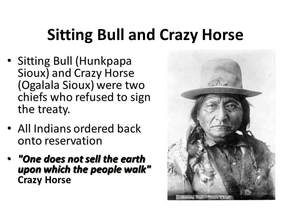 Sitting Bull and Crazy Horse