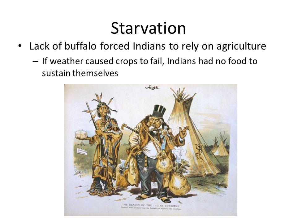 Starvation Lack of buffalo forced Indians to rely on agriculture