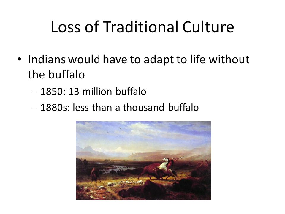 Loss of Traditional Culture