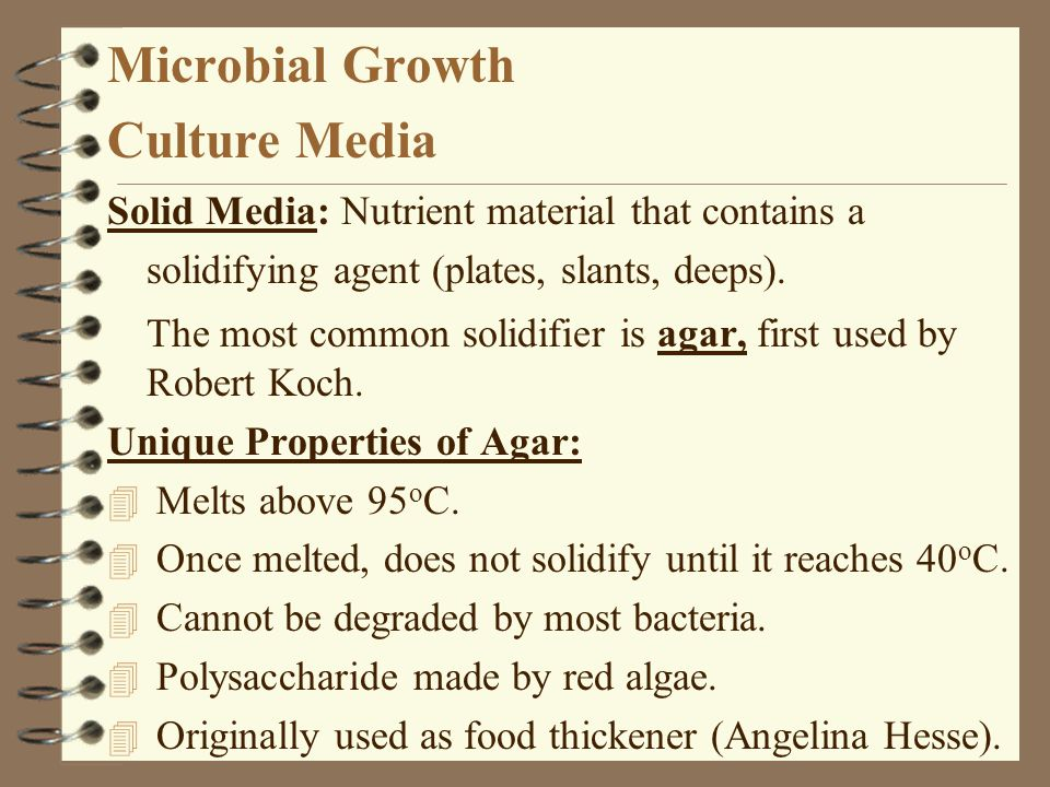 Microbial Growth Culture Media