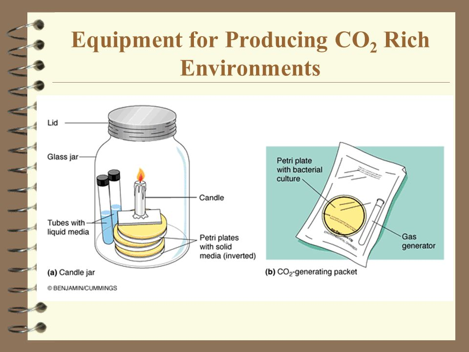 Equipment for Producing CO2 Rich Environments