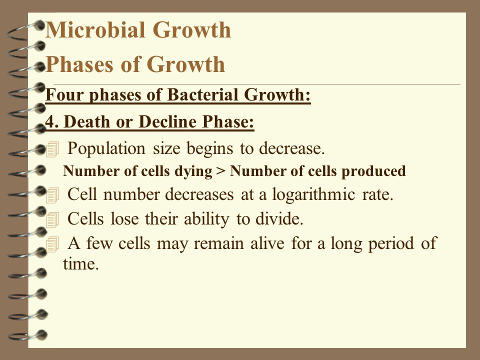 Microbial Growth Phases of Growth Four phases of Bacterial Growth: