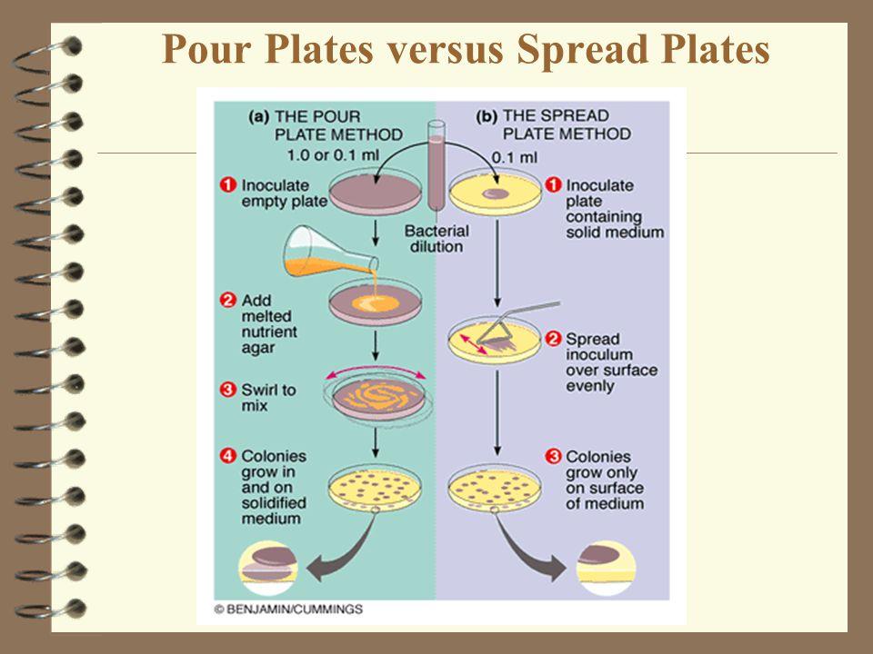 Pour Plates versus Spread Plates