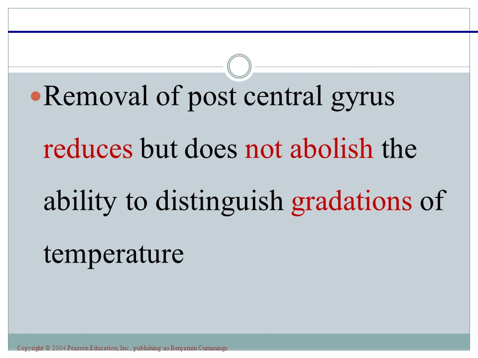 Removal of post central gyrus reduces but does not abolish the ability to distinguish gradations of temperature