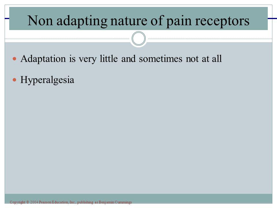 Non adapting nature of pain receptors