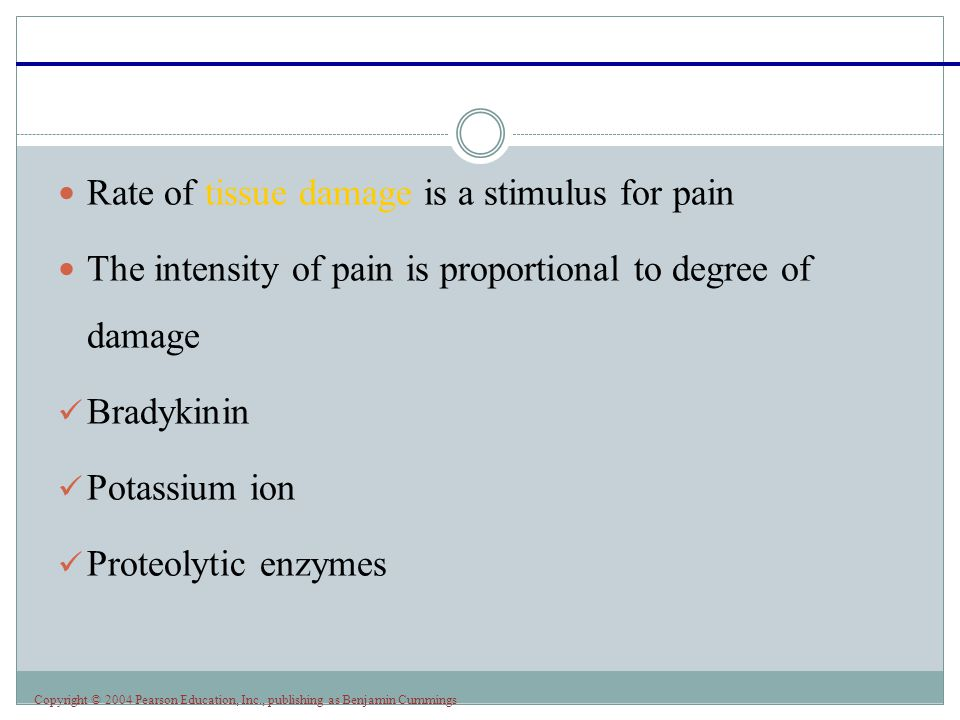 Rate of tissue damage is a stimulus for pain