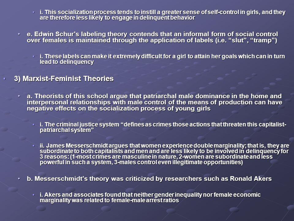 3) Marxist-Feminist Theories