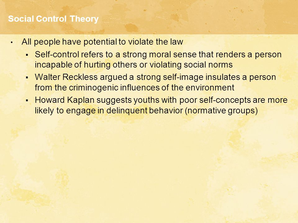 Social Control Theory All people have potential to violate the law.