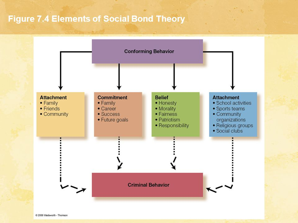 Figure 7.4 Elements of Social Bond Theory