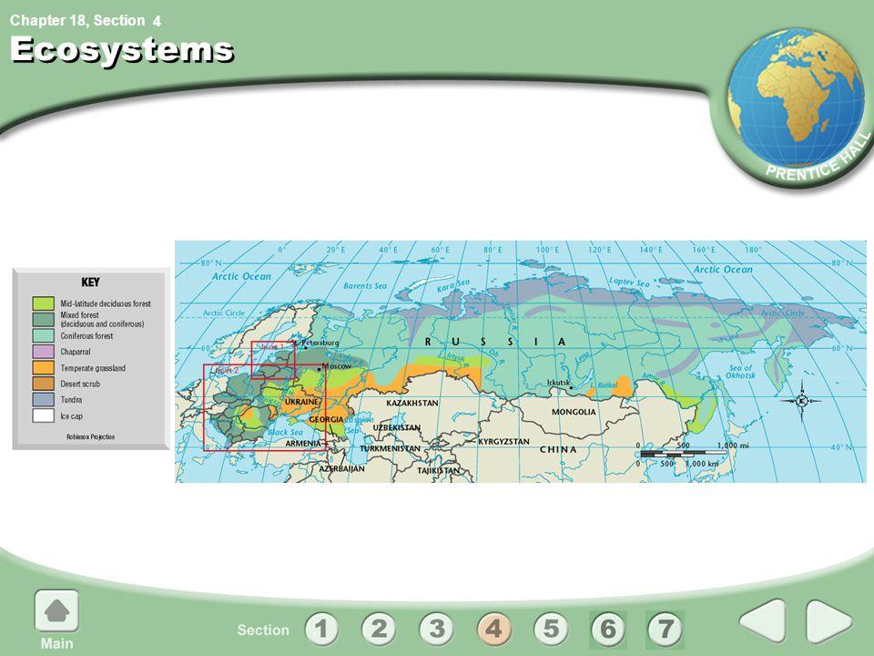4 Ecosystems
