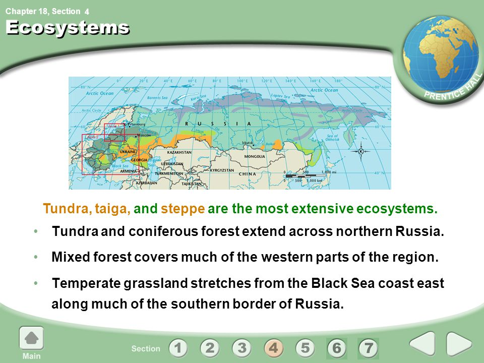 Tundra, taiga, and steppe are the most extensive ecosystems.