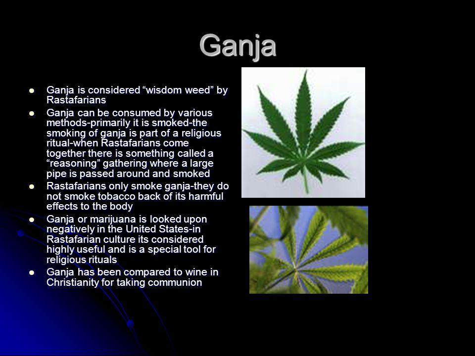 Ganja Ganja is considered wisdom weed by Rastafarians