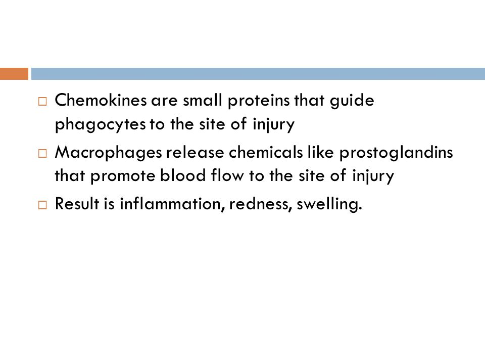 Chemokines are small proteins that guide phagocytes to the site of injury