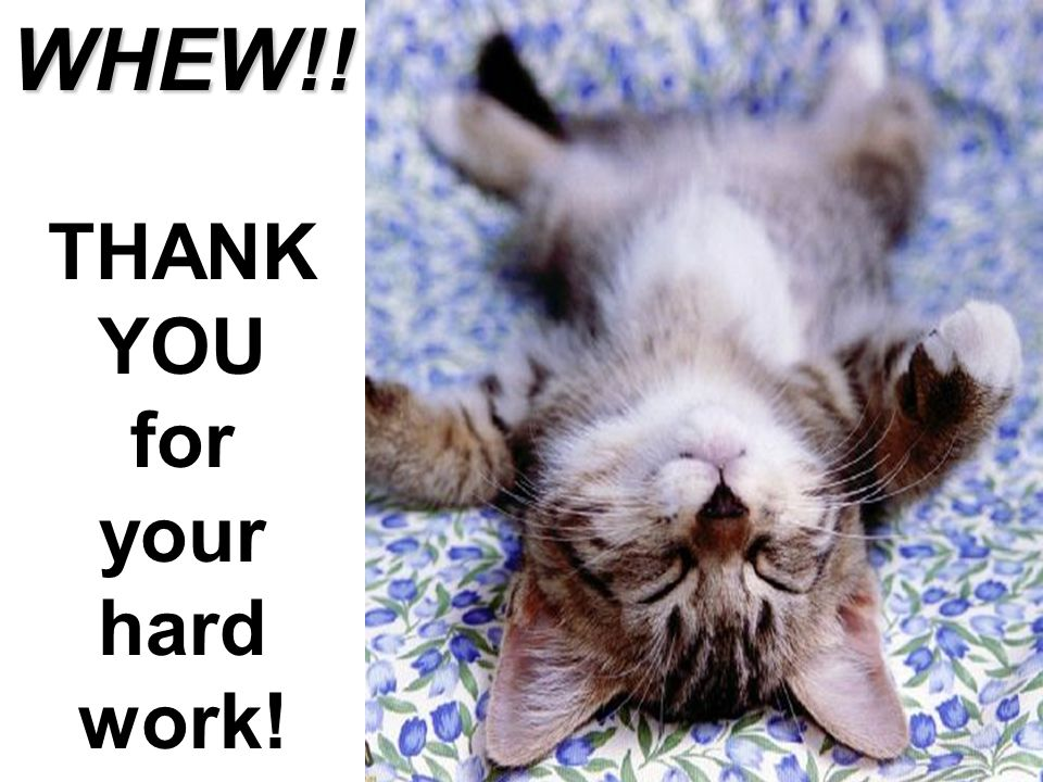 WHEW!! THANK YOU for your hard work! THANK YOU!