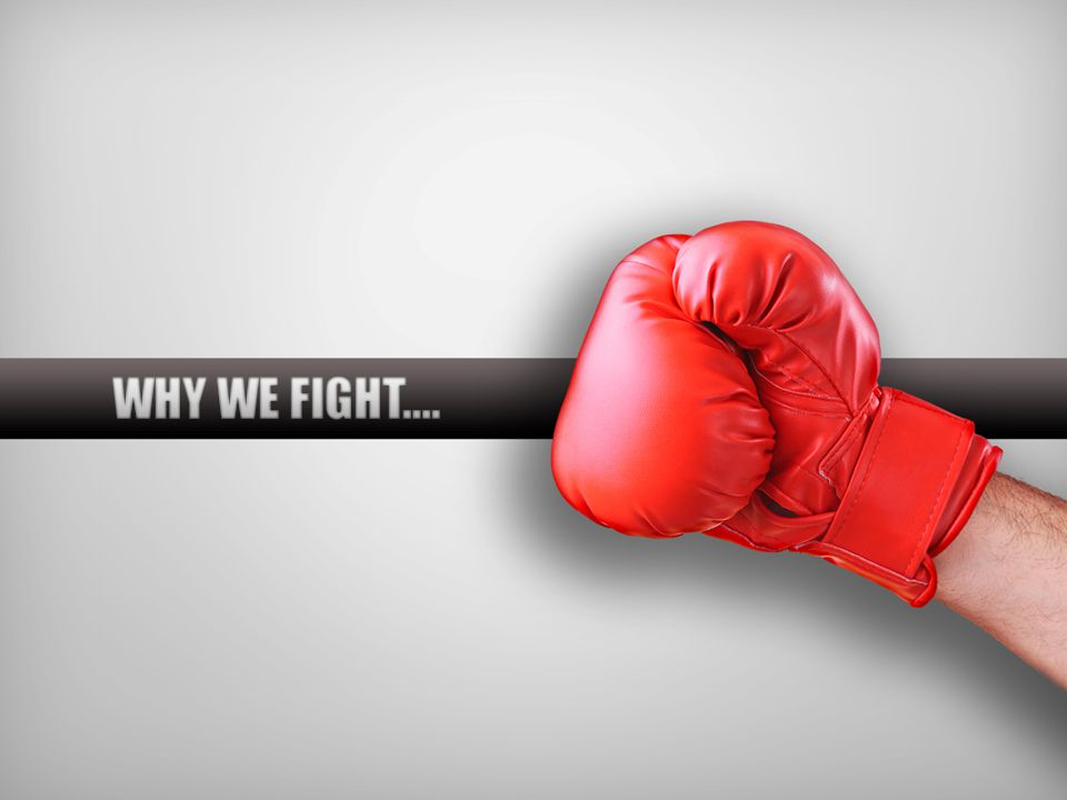 WHY WE FIGHT….