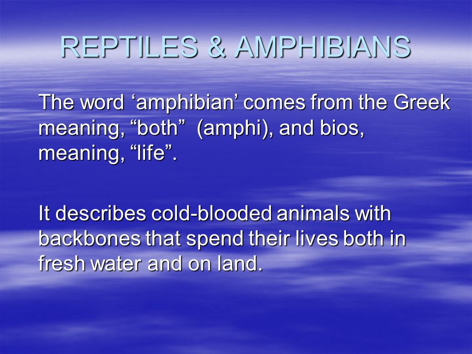 REPTILES & AMPHIBIANS The word 'amphibian' comes from the Greek meaning, both (amphi), and bios, meaning, life .