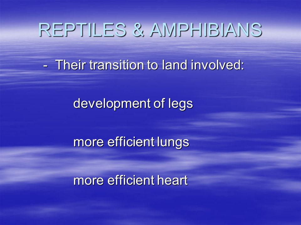 REPTILES & AMPHIBIANS - Their transition to land involved: