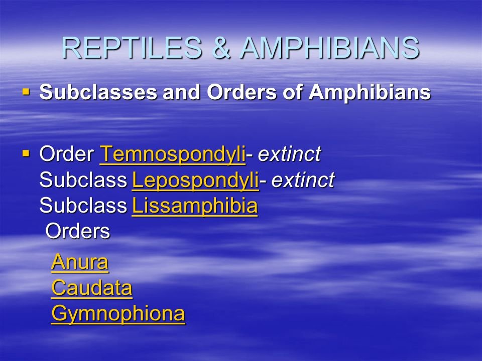 REPTILES & AMPHIBIANS Subclasses and Orders of Amphibians