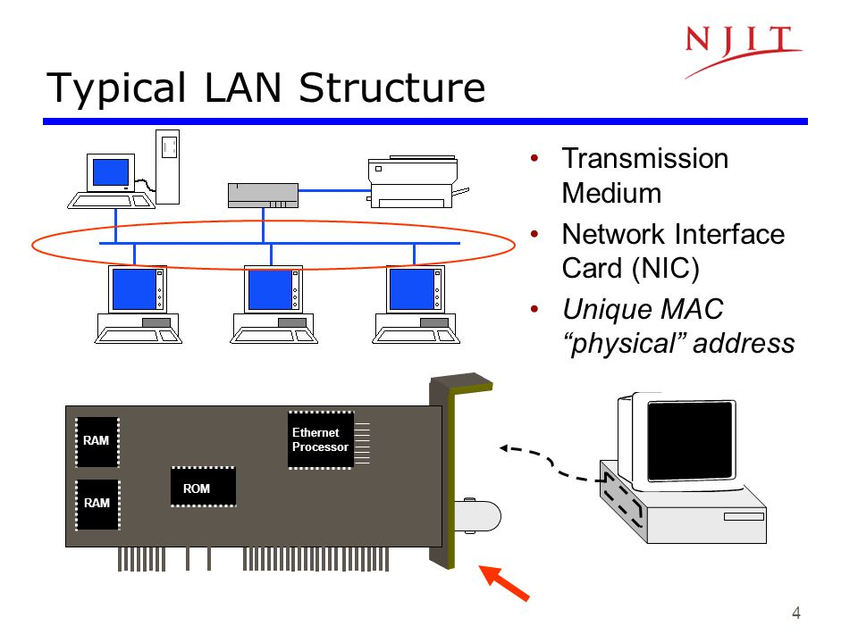 Typical LAN Structure Transmission Medium Network Interface Card (NIC)