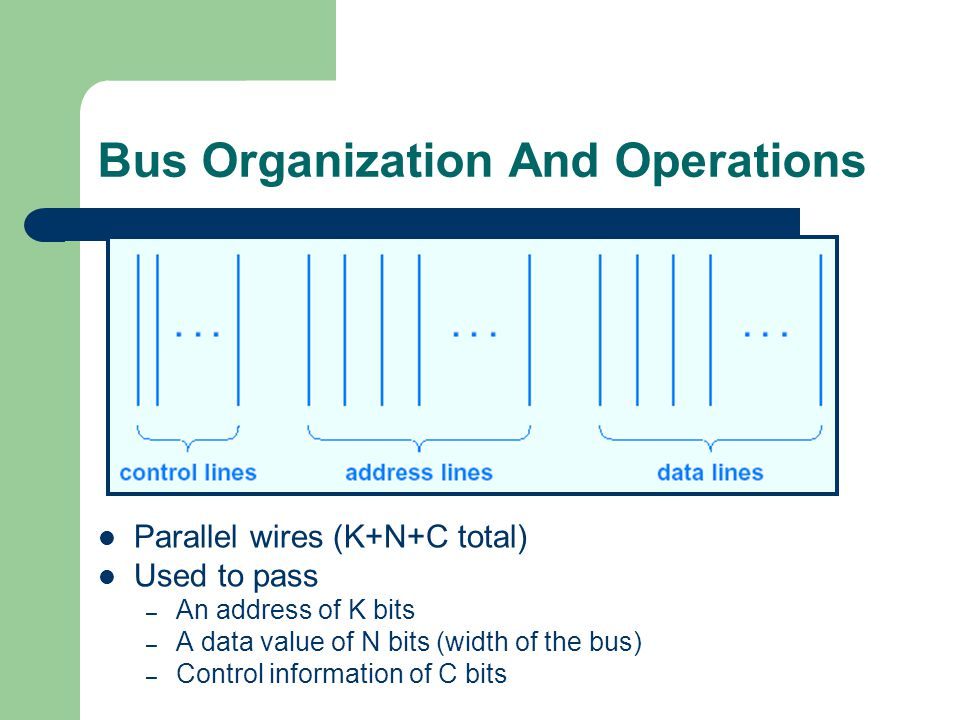 Bus Organization And Operations