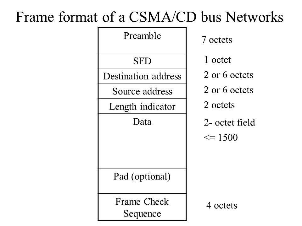Frame format of a CSMA/CD bus Networks