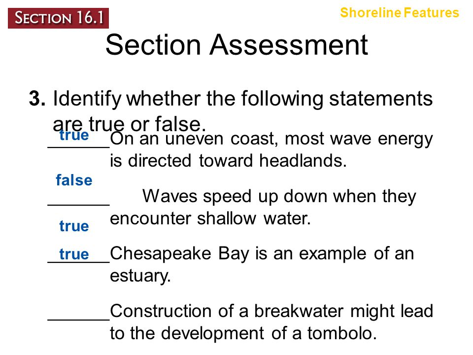 Shoreline Features Section Assessment. 3. Identify whether the following statements are true or false.