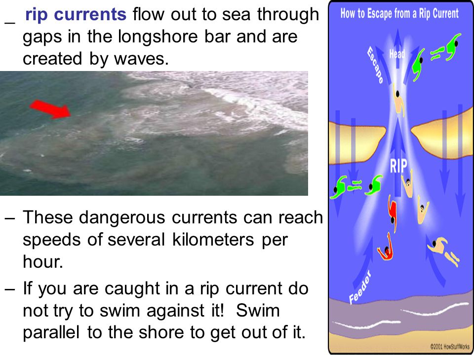 _ rip currents flow out to sea through gaps in the longshore bar and are created by waves.