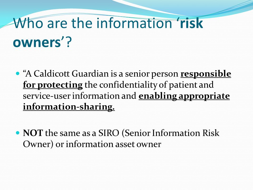 Who are the information 'risk owners'