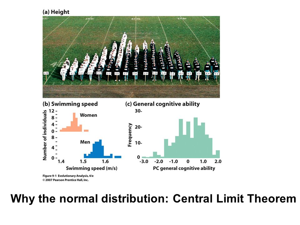 Why the normal distribution: Central Limit Theorem