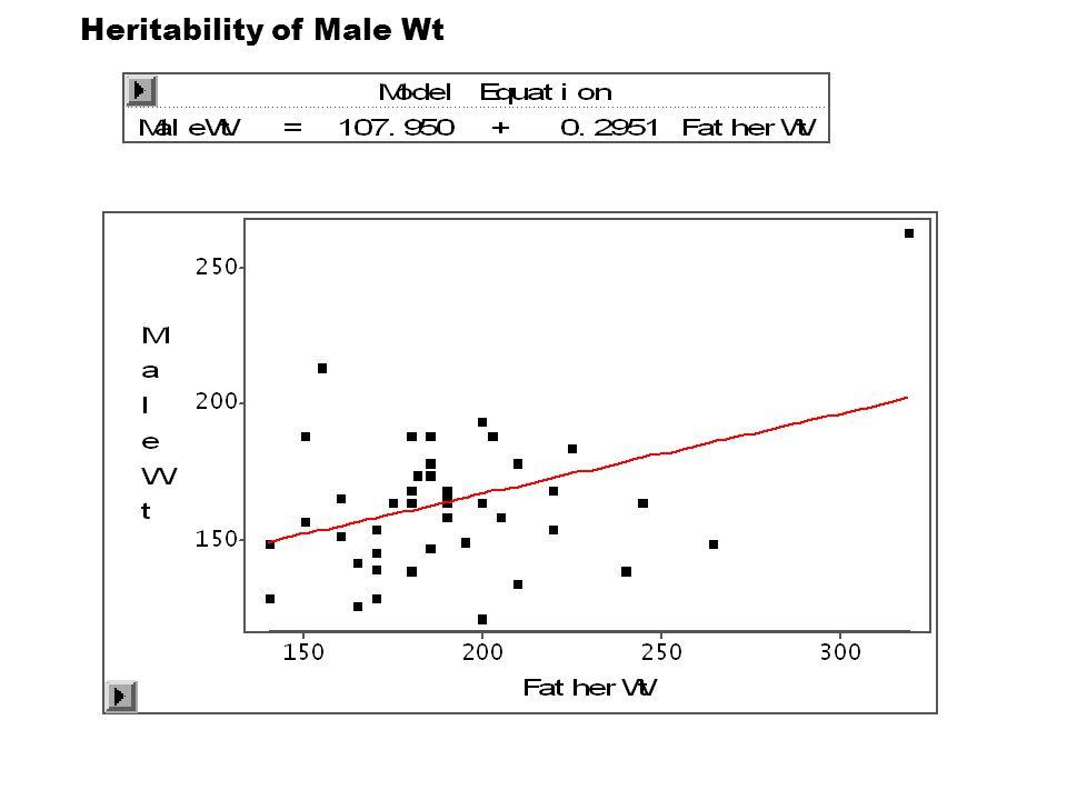 Heritability of Male Wt