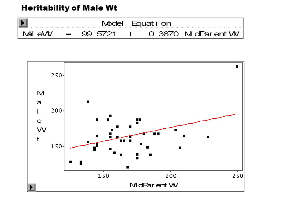 Heritability of Male Wt