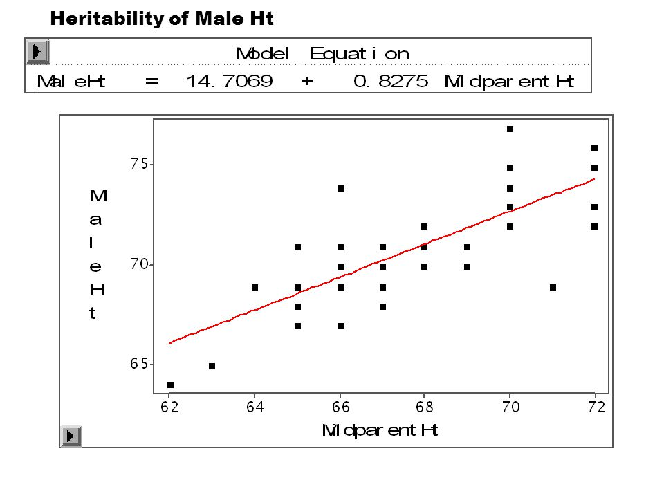 Heritability of Male Ht