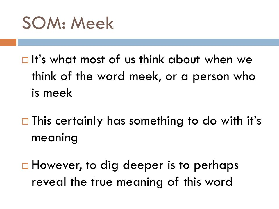 SOM: Meek It's what most of us think about when we think of the word meek, or a person who is meek.