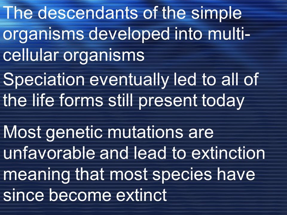 The descendants of the simple organisms developed into multi-cellular organisms