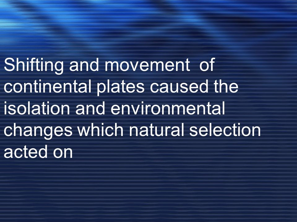 Shifting and movement of continental plates caused the isolation and environmental changes which natural selection acted on