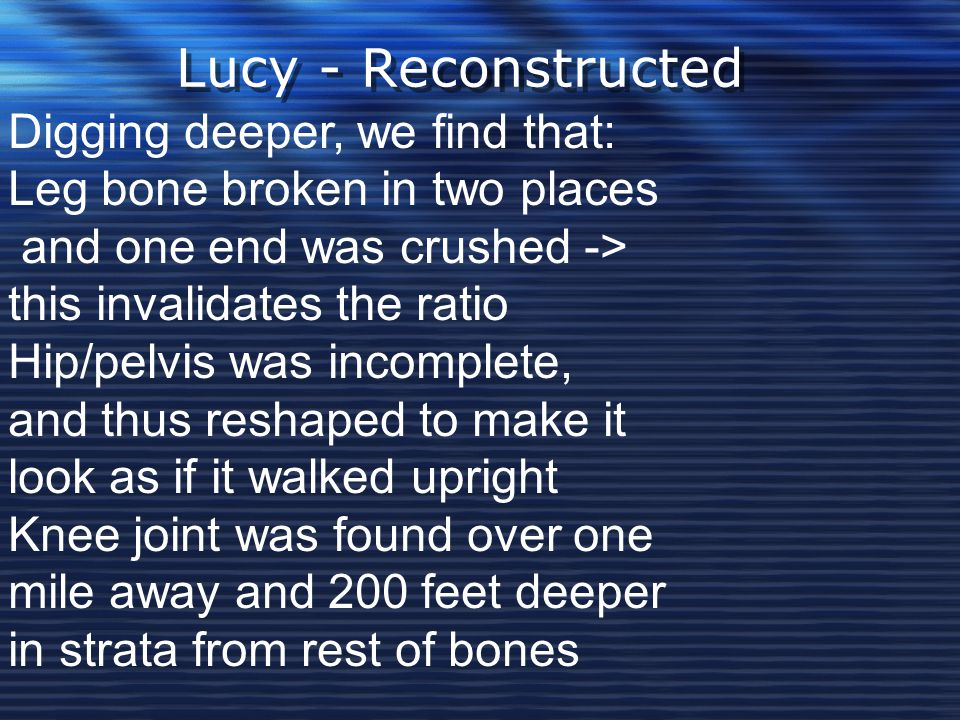 Lucy - Reconstructed Digging deeper, we find that: