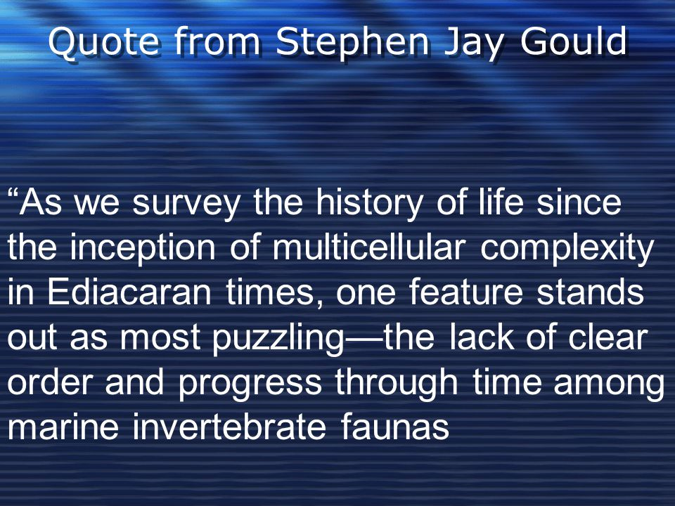 Quote from Stephen Jay Gould