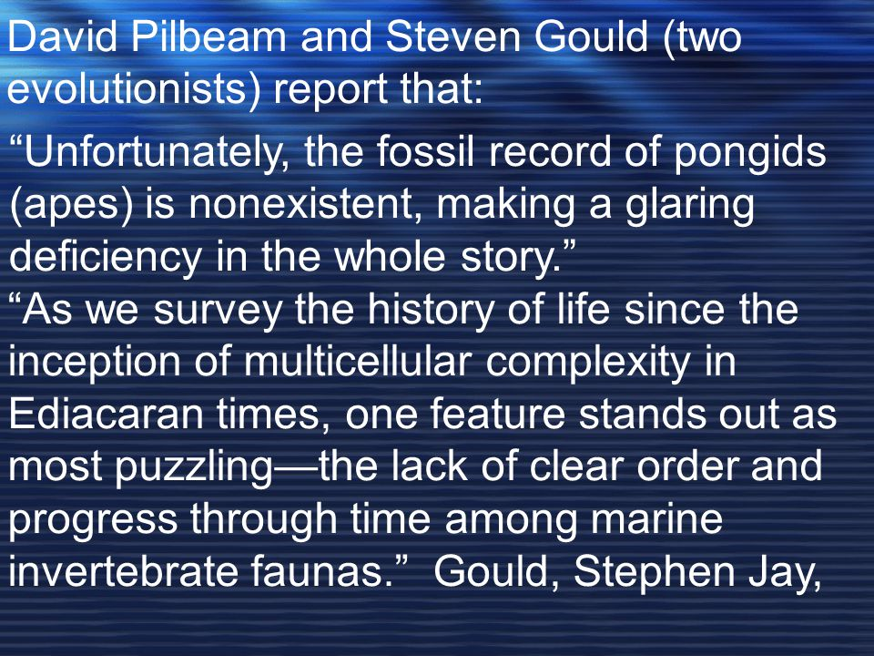 David Pilbeam and Steven Gould (two evolutionists) report that: