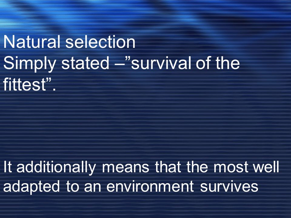 Simply stated – survival of the fittest .
