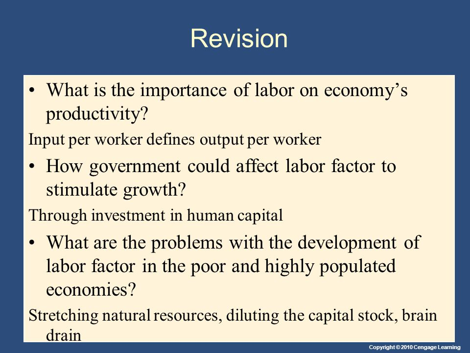 Revision What is the importance of labor on economy's productivity