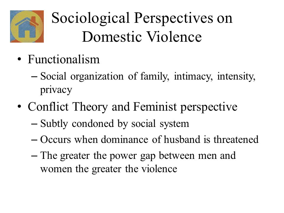 Sociological Perspectives on Domestic Violence